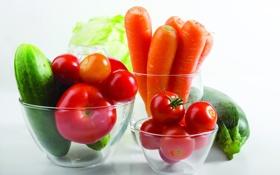 Обои Овощи, помидоры, морковь, кабачок