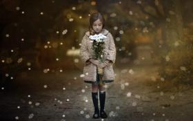 Обои цветы, снежинки, девочка