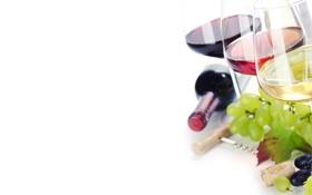 Обои вино, красное, белое, бутылка, бокалы, виноград, штопор
