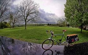 Картинка дорога, дождь, bike