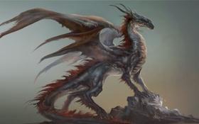 Обои камни, профиль, рога, арт, дракон, скала