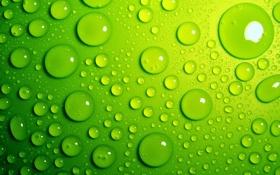 Обои вода, капли, фон, зелёные