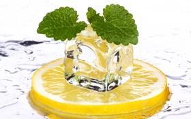 Картинка лед, лимон, кубики, еда, цитрус
