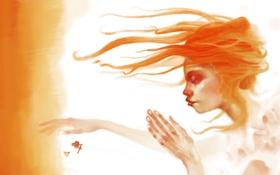 Обои волосы, рыжая, девушка, руки, свет