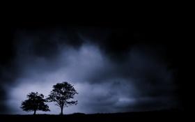 Картинка небо, деревья, пейзаж, ночь, природа, туман, силуэты