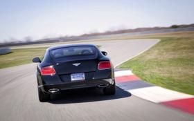 Обои Авто, Bentley, Continental, Дорога, Черный, Le Mans, Машина
