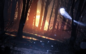 Картинка лес, свет, деревья, ночь, фантастика, медуза, арт