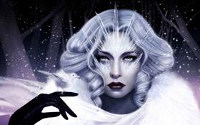 Картинка лед, девушка, снег, птица, рука, льдинки, арт