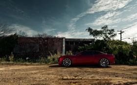 Обои красный, кабриолет, Chevrolet Camaro, камаро, шевролет