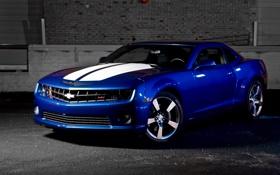Обои синий, Chevrolet, Camaro, шевроле, мускул кар, blue, камаро