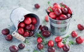 Обои ягоды, красные, Anna Verdina, клюква, ведерки