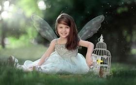 Обои улыбка, ангел, клетка, девочка, птичка, Lets fly together
