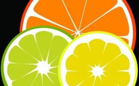 Обои лимон, апельсин, лайм, цитрус, фрукты