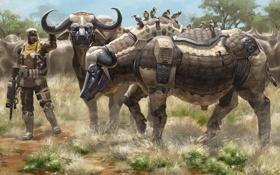 Обои роботы, арт, солдат, буйволы
