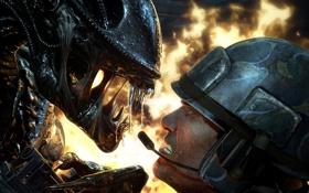 Картинка смерть, огонь, монстр, зубы, Чужой, солдат, винтовка