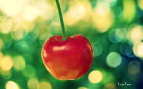 Картинка макро, вишня, еда, ягода