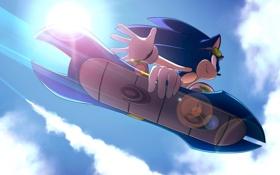 Обои небо, полет, доска, Sonic, ежи