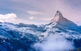 Обои зима, лес, небо, облака, горы, природа, позитив