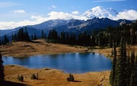 Обои вода, деревья, фото, обои, пейзажи, dual monitor, 3200x1200