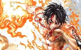 Обои огонь, кровь, аниме, арт, татуировка, парень, one piece