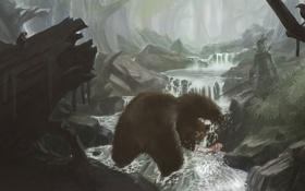 Картинка лес, птицы, река, ручей, человек, поток, рыба