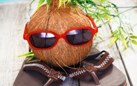 Картинка очки, summer, holiday, funny, coconut, сланцы, vacation