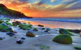 Обои песок, море, небо, вода, солнце, облака, пейзаж
