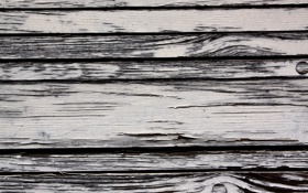 Обои white, wood, peeling, paint