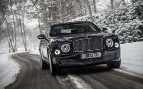 Обои Зима, Bentley, Синий, решетка, Фары, Автомобиль, Передок
