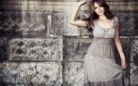 Картинка стена, гламур, платье