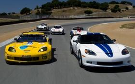 Обои гоночный трек, Chevrolet, Шевроле, передок, Корвет, Corvette, фон