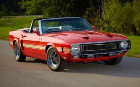 Картинка дорога, Shelby, GT500, mustang, мустанг, кабриолет, ford