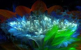 Обои листья, цветок, фантастика, природа, свет, лепестки