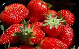 Картинка макро, клубника, ягода, красная