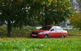Обои машина, авто, трава, дерево, auto, LADA, Priora