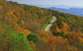 Картинка дорога, осень, лес, небо, деревья, горы, природа