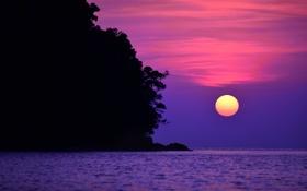 Картинка море, небо, солнце, облака, деревья, закат, скала