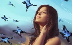 Обои небо, девушка, бабочки, мечты, Арт