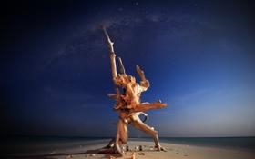 Картинка море, вода, ночь, природа, фото, дерево, океан
