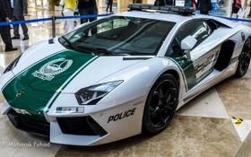 Картинка полиция, выставка, Dubai Police Car