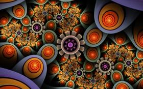 Обои свет, цветы, узор, цвет, круг, кольцо, симметрия
