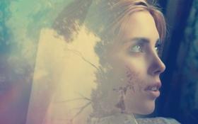 Картинка взгляд, стекло, листья, девушка, деревья, лицо, отражение