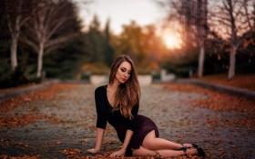 Картинка листья, юбка, ножки, прелесть