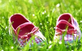 Обои лето, трава, настроения, солнечно