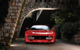 Обои красный, фон, Феррари, Ferrari, суперкар, классика, GTO