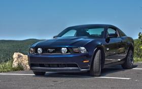 Обои синий, Mustang, Ford, Shelby, мустанг, форд, шелби