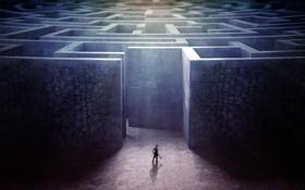 Картинка Skull, Maze, Labyrinth, Theseus