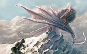 Картинка облака, щит, меч, человек, дракон, доспехи, воин