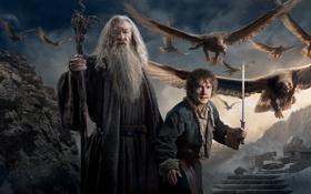 Обои Baggins, Gandalf, Ian McKellen, Martin Freeman, Year, Movie, Film