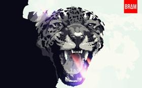 Картинка животные, арт, леопард